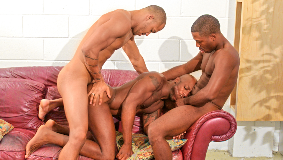 free-gay-black-orgy-mature-young-girl-tube