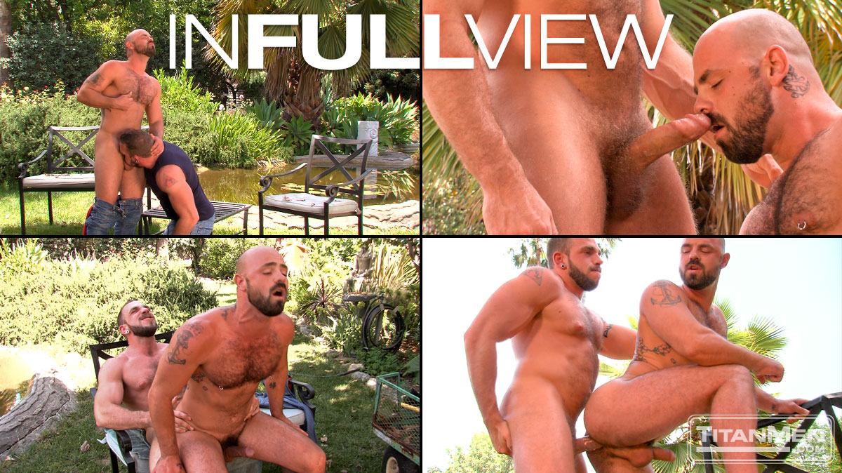 In Full View: Scene 2: Johnny Parker & Rogue Status