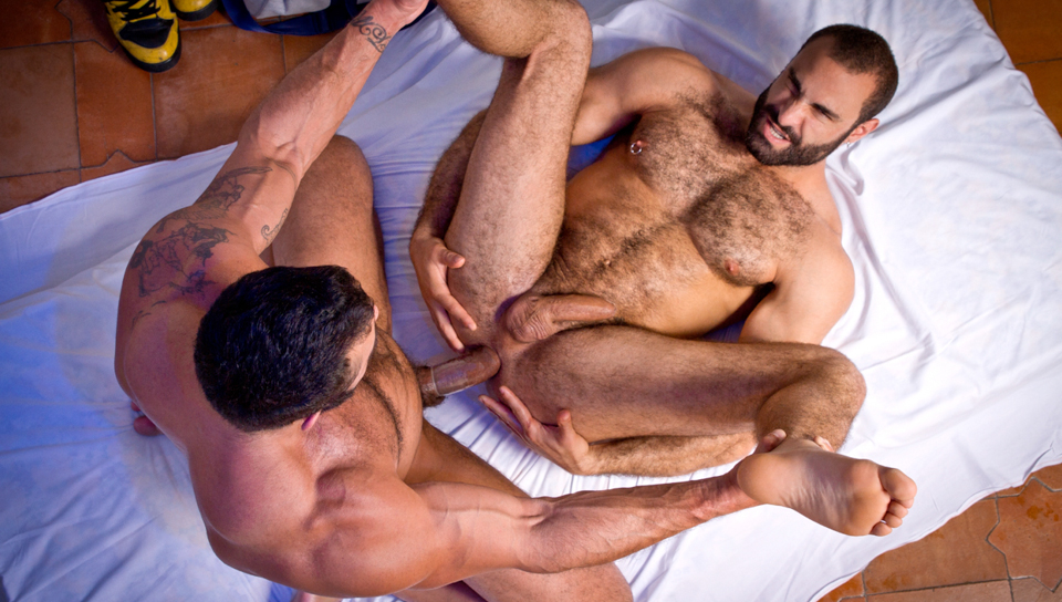 Порно фото гей медведи