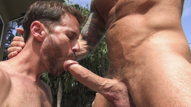 Rocco Steele and Sean Storm