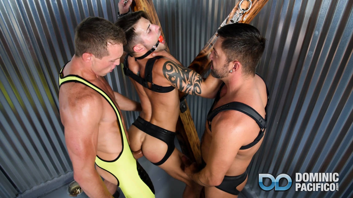 Dominic Pacifico, Pierce Paris and Casey Everett 9