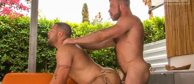Liam Knox and Julian Knowles
