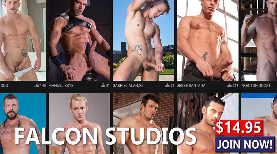 Falcon Studios $14.95