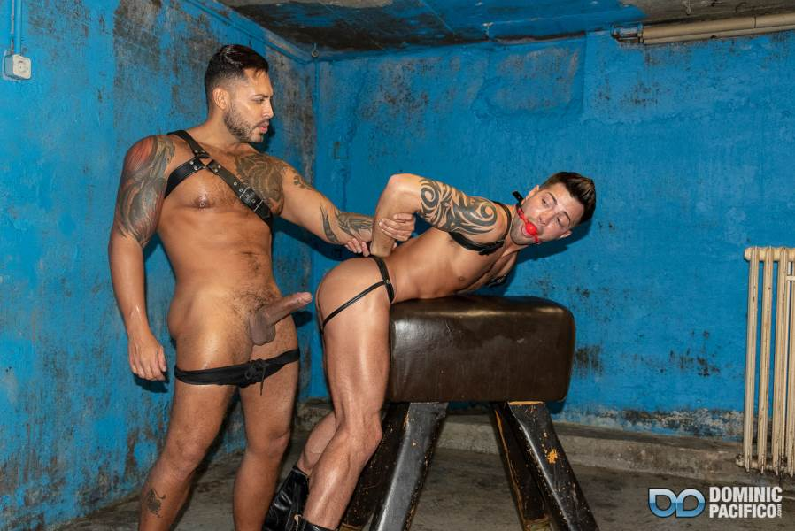Viktor Rom and Casey Everett For Dominic Pacifico 7