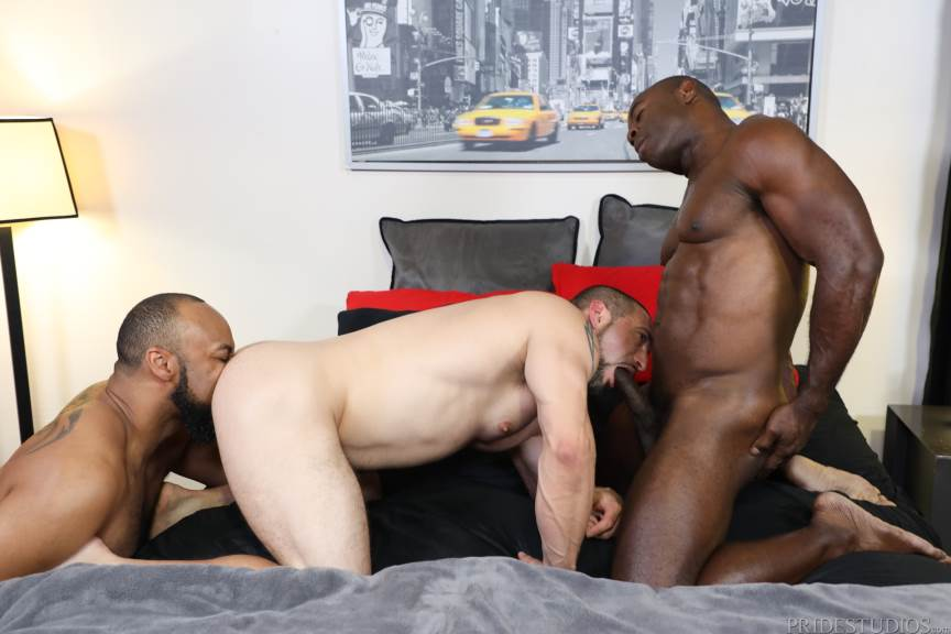 Ray Diesel, Ceasar Ventura and Aaron Trainer for Pride Studios 3